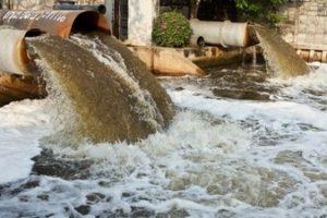چرا ورود فاضلاب کارخانه به رودخانه ها، مزارع و ... به آن ها آسیب می رساند؟
