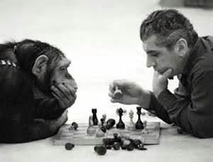 تفاوتها و شباهتهای یک موجود با انسان