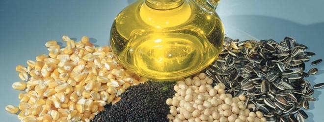 در قسمتهای مختلف گیاهان چه مواد غذایی وجود دارد